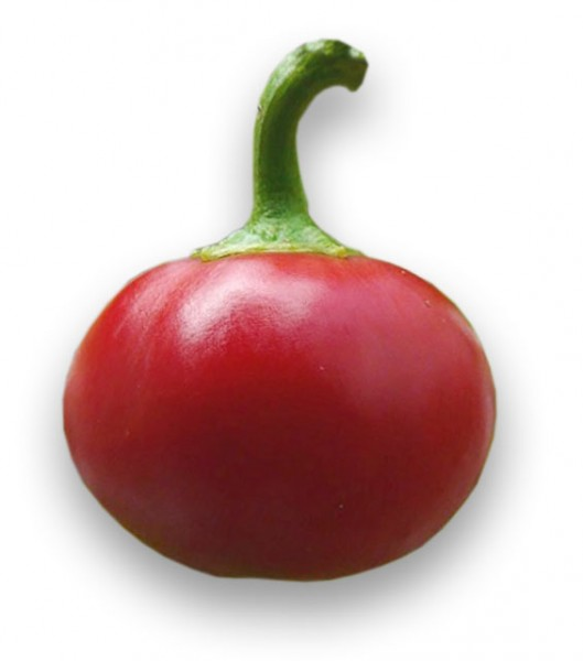 Large Red Cherry Chili Samen