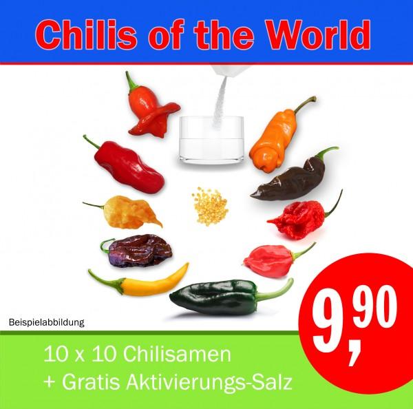 AKTION: Chilis of the World (S15), Chilisamen-Starter-Set