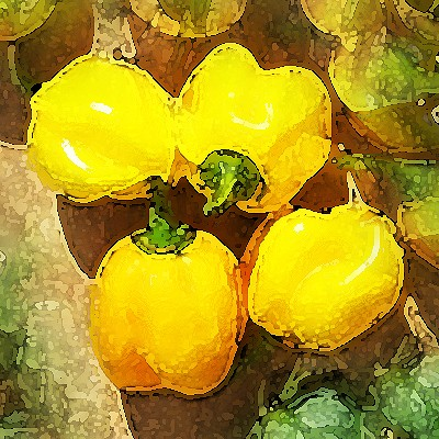 Scotch Bonnet Burkina Yellow Chili Samen