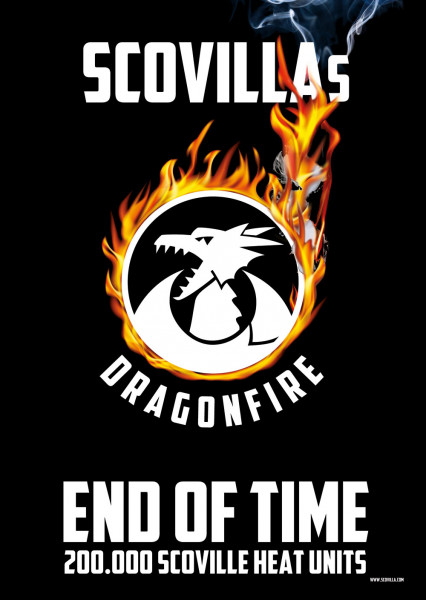 Plakat Dragonfire END OF TIME in A3