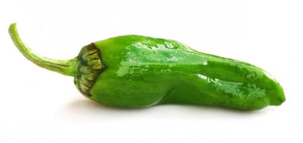 Pimientos de Padron Chili Samen